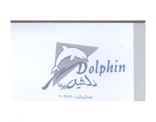 ایرادات مارکتینگ آژانس هواپیمایی دلفین پرنده| digital marketing consultant